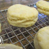 Flaky Biscuits Recipe: Dairy-Free, Egg-Free, Wheat/Gluten-Free