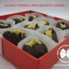 peanut-free milk-free buckeye chocolate candy