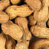 Study Links Peanut Allergy to Skin Gene Mutation and Household Peanut Dust
