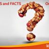 Food-Allergy-Myths-and-facts-FBBNR