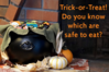 halloween-label-reading-is-it-safe-to-eat.png