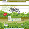 Soy Allergy Alert - Stop & Shop Supermarket Nature's Promise Organic Edamame Products