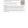 EpiPenUS-DHCPL-Final-110118_Page_6