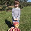 Apple Picking Day 1