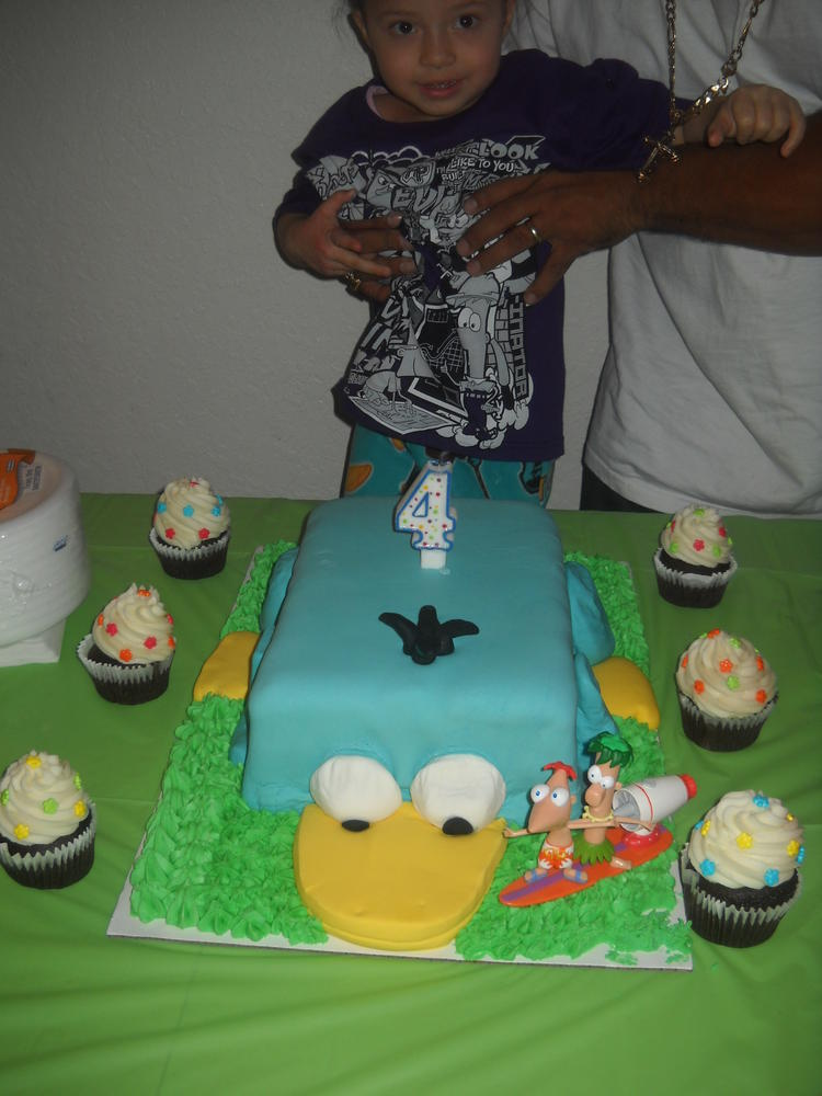Perry Birthday Cake, allergy-friendly