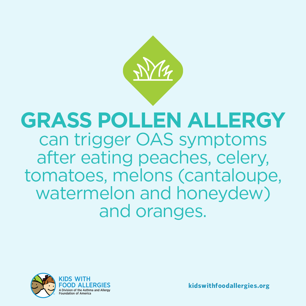 Food Allergy Education: Oral Allergy Syndrome and Grass Allergy