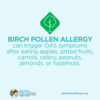 Food Allergy Education: Oral Allergy Syndrome and Birch Pollen
